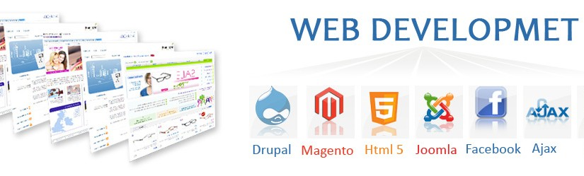 How Best Website Designing Company in Delhi Helps to Sustain Among Counterparts